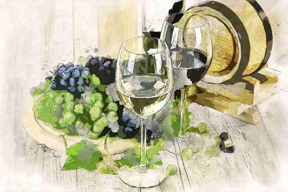 copa para cata de vinos