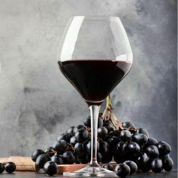 Copa de vino tinto grande Borgoña