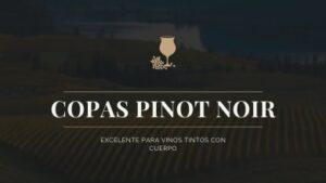 Copas para vino Pinot Noir