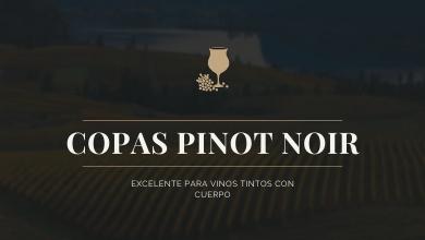 Copas para tintos Pinot Noir