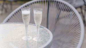 Copas de plastico para vino y champagne